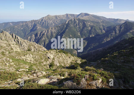 Monte Incudine from Refuge d'Usciolu, afternoon, France, Corsica, GR20 - Stock Photo