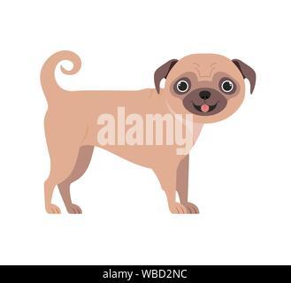 cute pug dog on white background - Stock Photo
