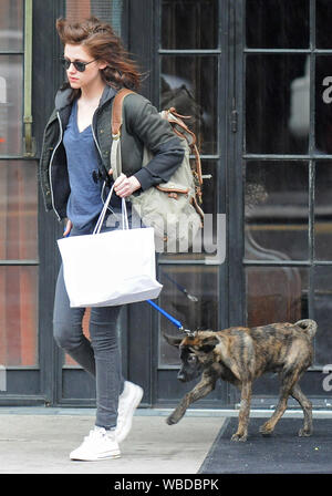 NEW YORK, NY - MAY 04:  Twilight star Kristen Stewart, takes a walk with her new rescue dog bear.  She saved the dog 2 days before it was to be put to sleep. on May 4, 2011 in New York City.   People:   Kristen Stewart - Stock Photo