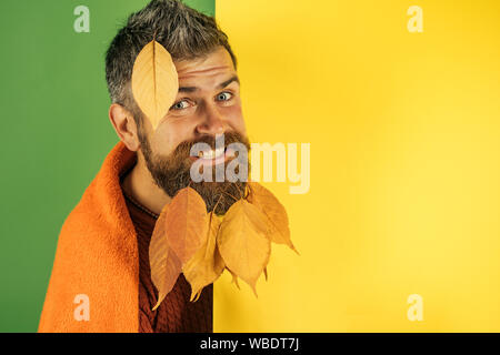 Hipster or bearded guy in autumn on green background. - Stock Photo