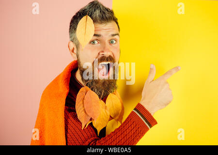 man with autumn leaves in beard on happy face - Stock Photo
