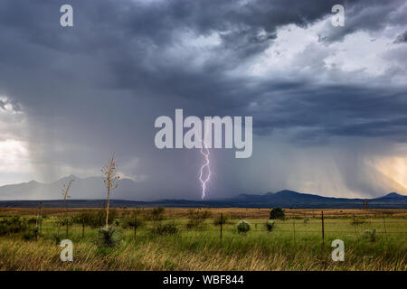Lightning bolts strike from a monsoon thunderstorm near Sonoita, Arizona. Stock Photo