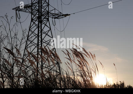 Silhouette of high voltage tower with electrical wires on sunset background, view through the grass. Power line support in a field with setting sun Stock Photo
