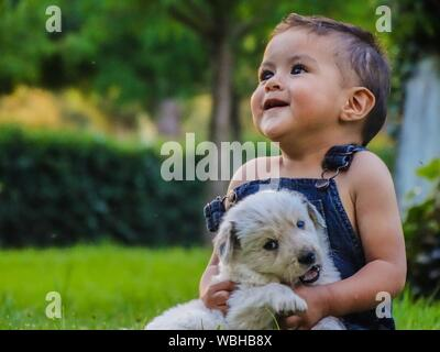 Cute Baby Boy Playing With Puppy On Grassy Field At Park - Stock Photo