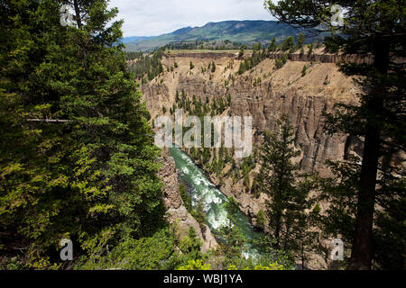 Tower Canyon Gorge near Calcite Springs Yellowstone Nataional Park Wyoming USA June 2015 - Stock Photo