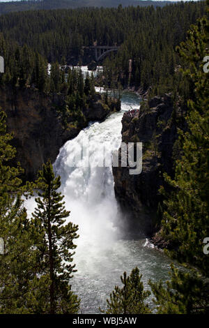 Upper Falls into the Grand Canyon on the Yellowstone River from the North Rim of the Grand Canyon of the Yellowstone River Yellowstone National Park W - Stock Photo