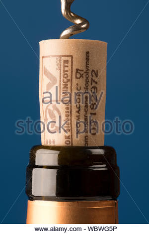 Artificial cork. With a similar structure to cork it has the advantage that it will not 'cork' the wine while still being  bio degradable. - Stock Photo