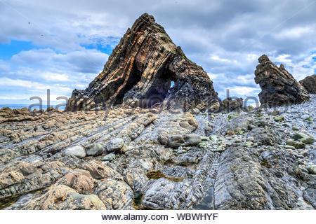 Blackchurch Rock, North Devon. Blackchurch rock lies on the north coast, part of the Crackington Formation, an Upper Carboniferous sandstone formation - Stock Photo