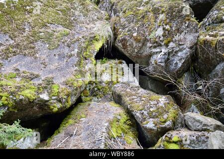 granite rocks in northern Italy covered with lichen and moss, - Stock Photo