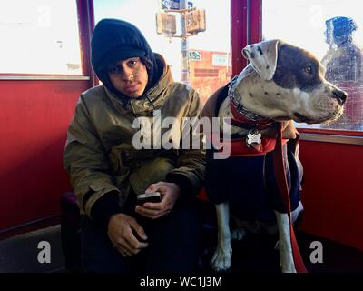 Portrait Of Young Man With Dog Using Mobile Phone While Sitting Indoors - Stock Photo