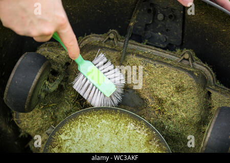 Close up view of man hand brushing off layer of wet grass stuck under automated lawnmower, maintenance concept. - Stock Photo