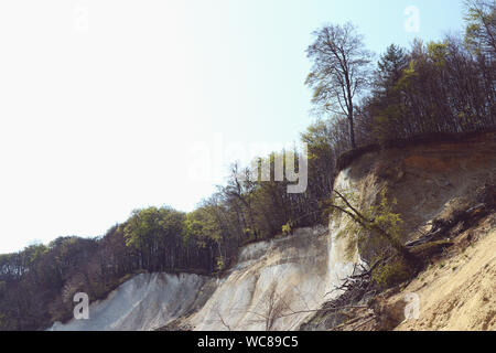 Low Angle View Of Trees On Chalk Cliffs At Rugen Island - Stock Photo