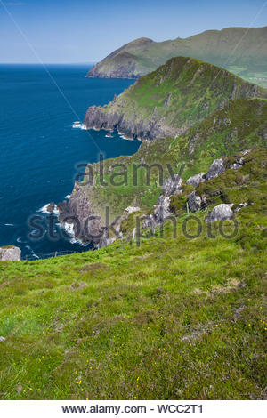 Looking east along the rugged shoreline of sea cliffs and lush green mountains towards Brandon Head from Ballydavid Head - Stock Photo