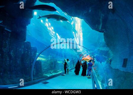 The image of Dubai Aquarium in Dubai Mall, UAE