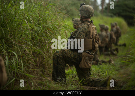 U.S. Marines with the Ground Combat Element, Marine Rotational Force – Darwin (MRF-D), prepare to begin a patrol as part of exercise Tafakula, Pea, Tonga, August 19, 2019. Tafakula is a multilateral exercise hosted by His Majesty's Armed Forces of Tonga, which includes MRF-D Marines and service members from the New Caledonian Armed Forces, the New Zealand Defence Force, the Australian Defence Force and the Nevada National Guard. The exercise provides an exceptional opportunity to develop relationships, learn about each other's cultures, and share military capabilities. (U.S. Marine Corps photo - Stock Photo
