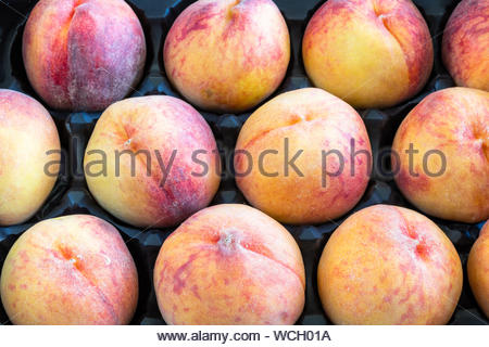 Large peaches forming a pattern inside of a box. Peaches are a healthy food because they are rich in potassium plus vitamins A, C, and E - Stock Photo