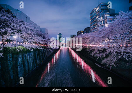 Canal Amidst Illuminated Trees And Buildings Against Sky In City - Stock Photo