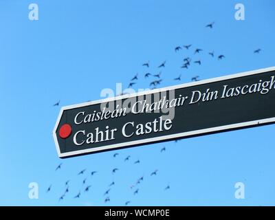 Low Angle View Of Information Sign Against Clear Blue Sky - Stock Photo