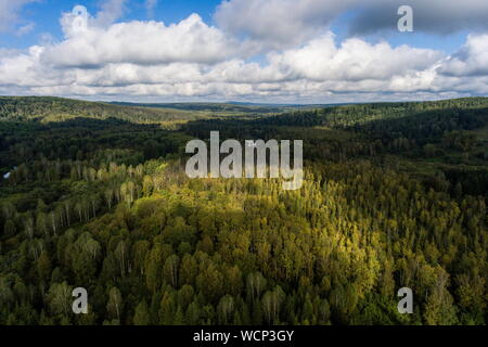 Russia. 28th Aug, 2019. ALTAI TERRITORY, RUSSIA - AUGUST 28, 2019: A locality in Togul District of Russia's Altai Territory, which is to become part of a protected area under the working name of Togul National Park; according to the Russian government's project Ekologia (Ecology), the proposed national park is to be established by 2024 and to include parts of Zarinsk District, Togul District, and Yeltsovka District of the Altai Territory, with a total area of over 160 hectares. Kirill Kukhmar/TASS Credit: ITAR-TASS News Agency/Alamy Live News - Stock Photo