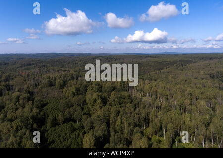 Russia. 28th Aug, 2019. ALTAI TERRITORY, RUSSIA - AUGUST 28, 2019: An aerial image of a locality in Togul District of Russia's Altai Territory, which is to become part of a protected area under the working name of Togul National Park; according to the Russian government's project Ekologia (Ecology), the proposed national park is to be established by 2024 and to include parts of Zarinsk District, Togul District, and Yeltsovka District of the Altai Territory, with a total area of over 160 hectares. Kirill Kukhmar/TASS Credit: ITAR-TASS News Agency/Alamy Live News - Stock Photo
