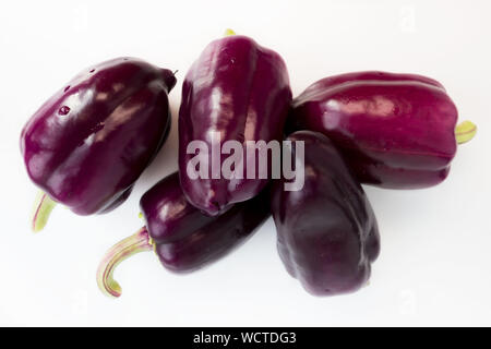five violet peppers on a white background. - Stock Photo