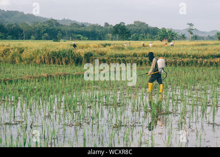Full Length Of Man Working On Agricultural Field Against Sky - Stock Photo