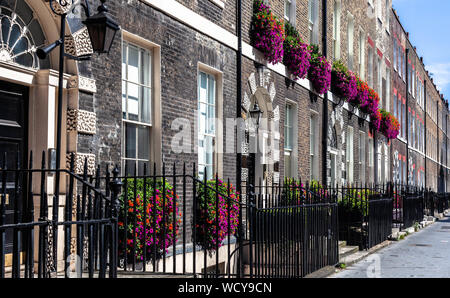 Georgian terraced houses fronts, decorated with natural flowers, Gower Street, Bloomsbury, Central London WC1, England, UK. - Stock Photo