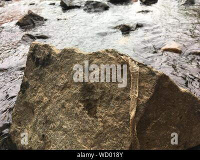 High Angle View Of Stream - Stock Photo