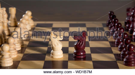 Close-up Of Knights And Pawns On Chess Board - Stock Photo