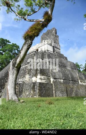 Low Angle View Of Mayan Pyramid - Stock Photo