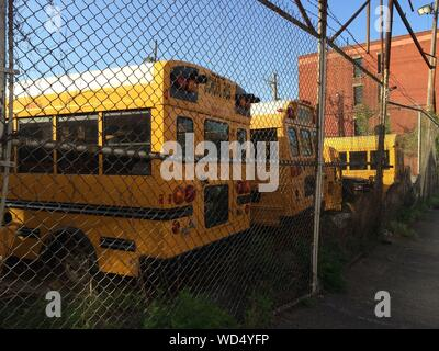 School Buses In Parking Lot Seen Through Chainlink Fence - Stock Photo