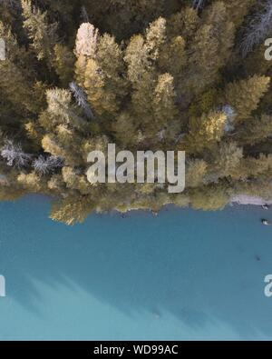 An overhead aerial shot of beautiful tall trees in a forest - Stock Photo