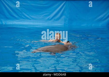 happy man swim with dolphin in dolphinarium - Stock Photo