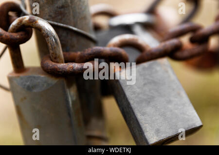 Rusted padlocks chained together. - Stock Photo