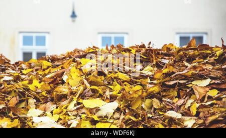 Heap Of Fallen Autumn Leaves Against House - Stock Photo