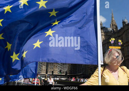 A day after British Prime Minister Boris Johnson successfully asked the Queen to suspend (prorogue) Parliament in order to manoeuvre his Brexit deal with the EU in Brussels, a Remain protester stands with flags and banners while lunchtime TV interviews are filmed by broadcasters on College Green, on 29th August 2019, in Westminster, London, England. - Stock Photo