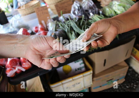 Cropped Image Of Hand Paying Cash To Farmer - Stock Photo