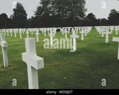 Cross In A Row At Normandy American Cemetery And Memorial - Stock Photo