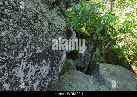 Hiker ascending the Six Husbands Trail in Thompson and Meserve's Purchase, New Hampshire during the summer months. - Stock Photo