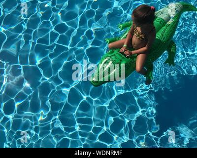 High Angle View Of Girl Sitting On Inflatable Crocodile In Swimming Pool - Stock Photo