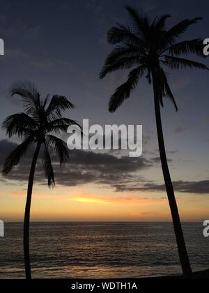 Silhouette Coconut Palm Tree By Sea Against Sky During Sunset - Stock Photo