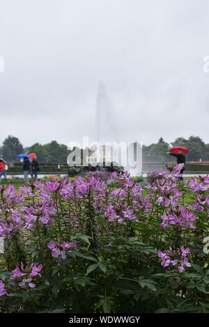 water fountain with flowers in foreground - Stock Photo
