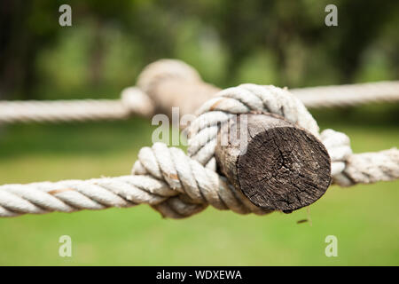 Rope fastened to the timber. I did a ladder between the trees. - Stock Photo