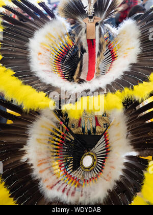 Close up of the feather headdress and bustle of a Native American man's pow wow costume.