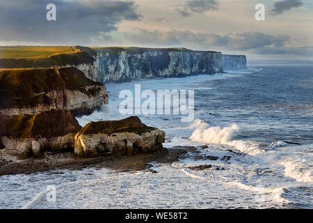The view of Bempton Cliffs from Thornwick Bay, Flamborough Head, East Yorkshire, UK. - Stock Photo