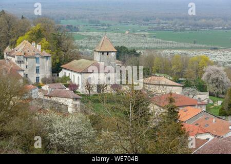 France, Meurthe et Moselle, Cotes de Toul, Boucq, view of the village, the church, the castle and the orchards of cherry plum trees in bloom - Stock Photo