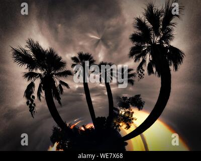 Digital Composite Image Of Silhouette Palm Trees Against Cloudy Sky - Stock Photo
