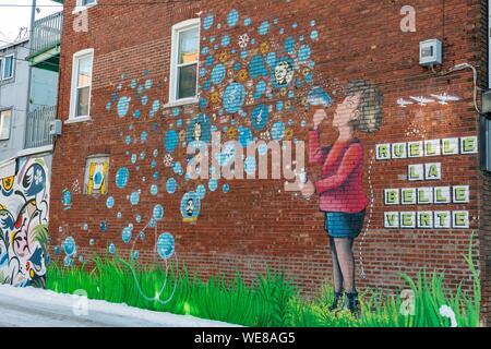 Canada, Quebec province, Montreal, Villeray neighborhood, La Belle Verte alley, mural by Mauro Bordet - Stock Photo