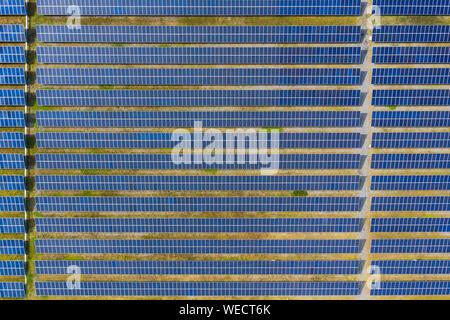 Solar energy farm producing clean renewable energy from the sun . Thousands of solar panels, Photovoltaic solar cells , huge solar farm.