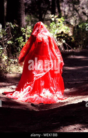Woman Covered In Red Dress Standing By Trees In Forest - Stock Photo